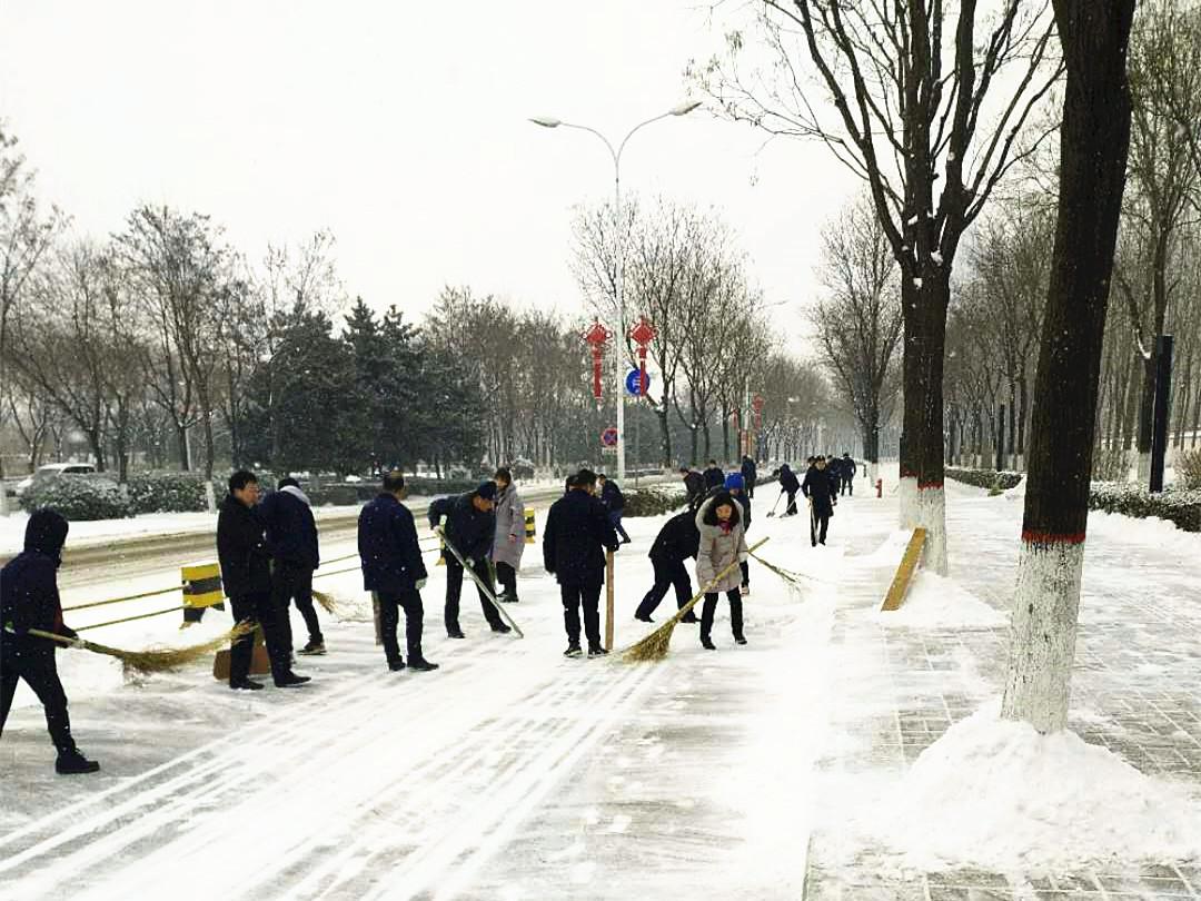 大雪纷飞扬 众人齐力扫雪忙